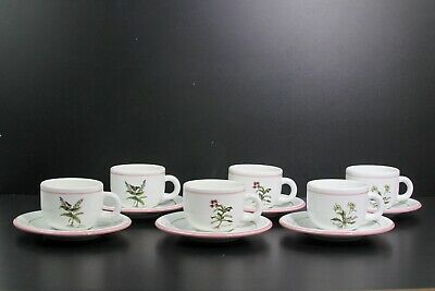 Pretty Primula Italy Floral Botanical Herb Pattern Set Of Six Teacups & Saucers