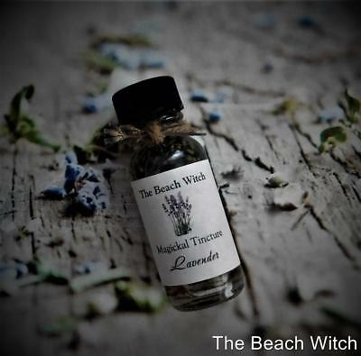 LAVENDER INFUSED OIL Ritual Oil Herb Oil Spell Oil Potion~Wicca Witchcraft Pagan