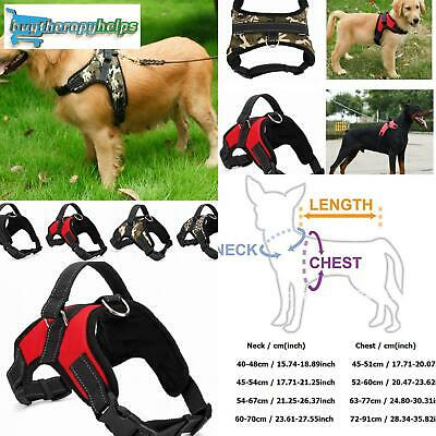 Dog Collar Harness Pet Warning Alert All-In-One No Pull New