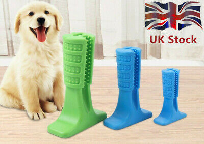 UK Dog Toothbrush Toy Clean Teeth Brushing Stick Pet Brush Mouth Chewing Clean
