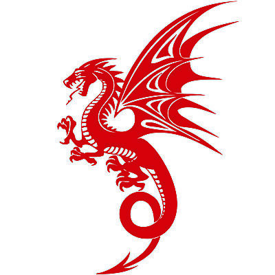 1499-1 568 1479 4 DIFFERENT DRAGON TO PICK FROM VINYL DECAL STICKER 910