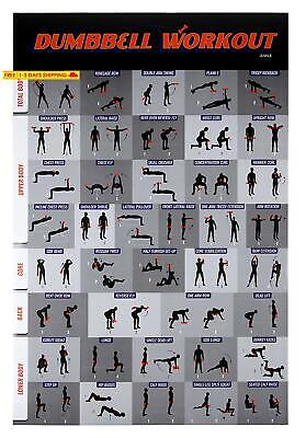 Workout Poster - Dumbbell Exercise Poster Laminated, Free Weight Strength Traini
