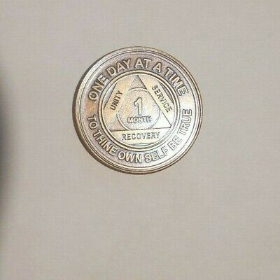 AA ALCOHOLICS ANONYMOUS 8 months recovery sobriety chip coin token