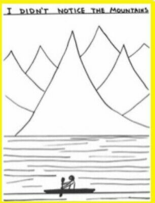 David Shrigley Art Poster Yellow: I Didn't Notice the Mountains 18x24 Landscape