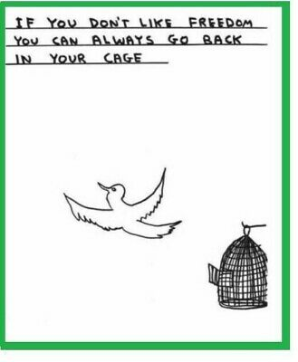 David Shrigley Poster Green: If You Don't Like Freedom You Can Go Back in Cage