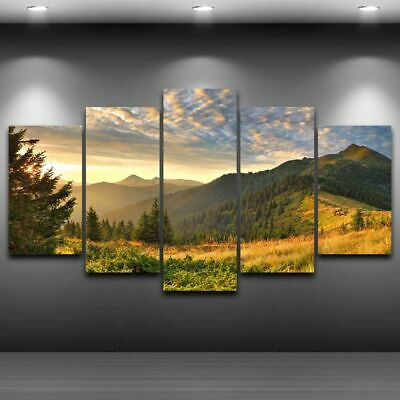 Mountain Modern Art Oil Painting Print Canvas Picture Home Wall Decor Unframed