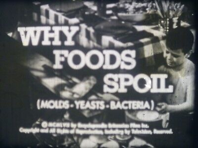 Why Foods Spoil: Molds Yeasts Bacteria  1957 16mm short film