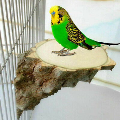 Wood Perch Parrot Hamster Squirrel Bird Cage Play Stand Grind Toys Pet Platform