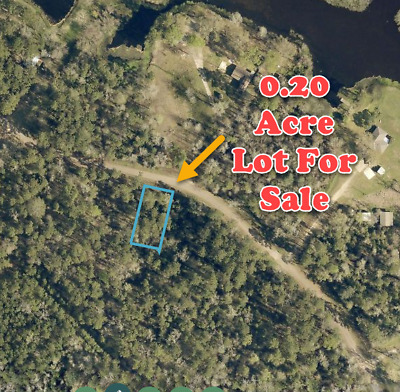 COUNTRY LOT NEAR LAKE - CONROE TX * RV OK * RIVER ACCESS *- High-Bid Wins