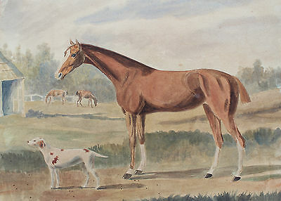 Early 19th Century Watercolour Painting Horse and Hound in a Paddock