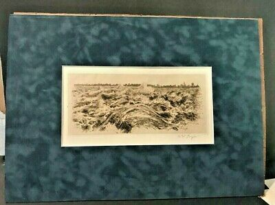 """AMOS SANGSTER ETCHING Limited Edition rapids above the falls"""" l@@ks free shippin"""