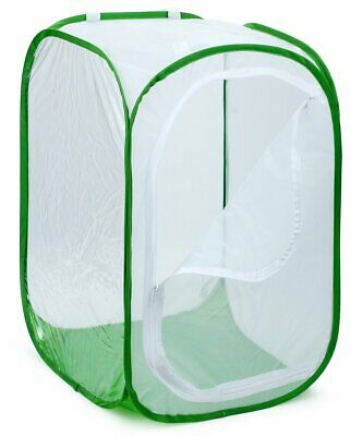 Monarch Butterfly Habitat, Foldable Insect Mesh Cage Glass Container Popup
