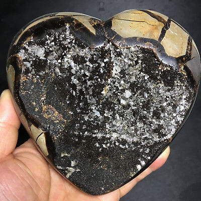 1529g Natural Energy Stone Turtle Ancient Rock Specimen Heart-shaped 02
