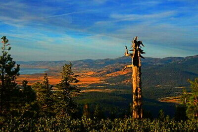 Tranquil WILDERNESS MODOC COUNTY