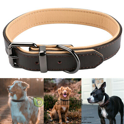 "1.5"" Width Padded Dog Collar HEAVY DUTY Genuine Real LEATHER Medium Large Pet"