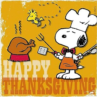 Snoopy Happy Thanksgiving Iron On Transfer For T-Shirt & Light Color Fabrics #35