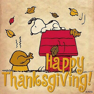 Snoopy Happy Thanksgiving Iron On Transfer For T-Shirt & Light Color Fabrics #36