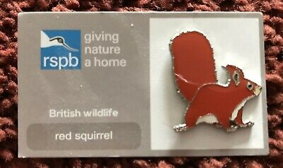 Rspb Red Squirrel Pin Badge