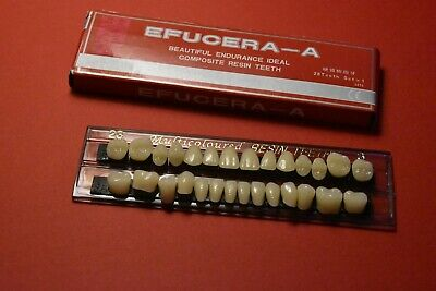 Halloween Horror Prop - Dental Quality Resin Teeth