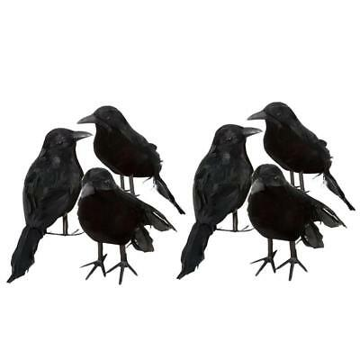 6PCS Black Raven Movie Prop Fake Crow Halloween Fake Bird Hunting Decoration US