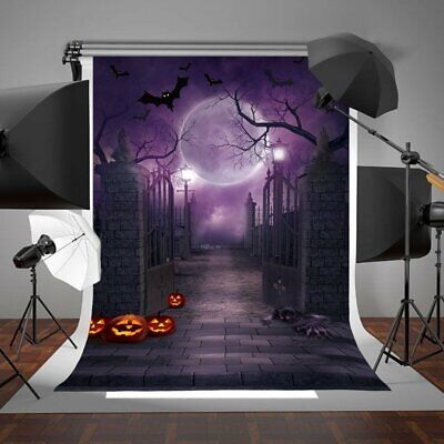 5ft x 7ft Halloween Backdrop Photo Studio Party Decoration Gothic Cloth Props