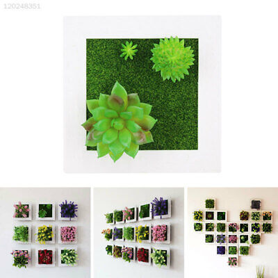 Wall Hanging Simulation 3D Plants Creative Ornament Pastic Pastic Flower Frames