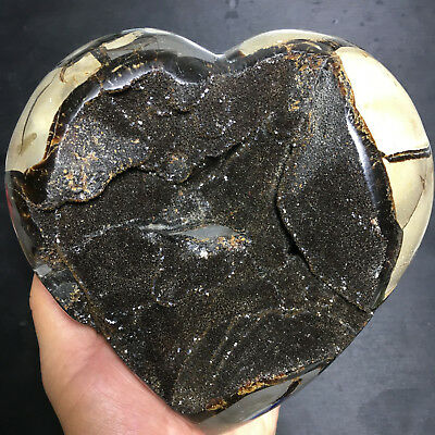 2780g Natural Energy Stone Turtle Ancient Rock Specimen Heart-shaped 01