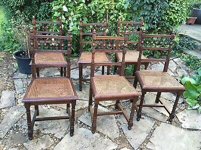Six Traditionally Caned Seated Solid Oak Carved Turned & Polished Dining Chairs