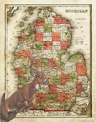 Vintage Whitetail Deer Hunting Illinois State Map Art Print Antlers Sheds MAP07