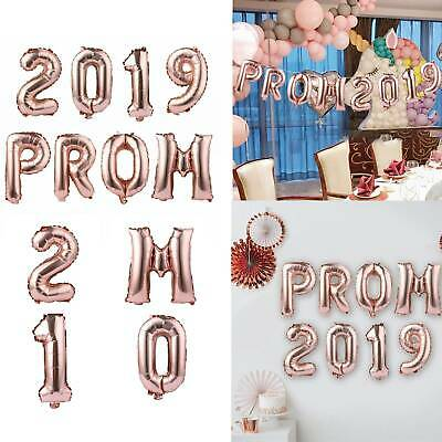 Rose Gold Prom Party Celebration Bunting Banner Tinsel Balloons Backdrop Decor