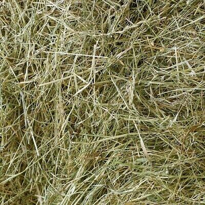 Meadow Hay Bedding Feed for Rabbits Guinea Pigs 2kg 4kg