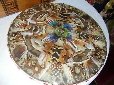 Antique/Vintage Circular Feather Picture- Framed