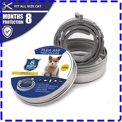 Bayer Seresto Flea and Tick Treatment Collar For cat 7-8 Month Protection
