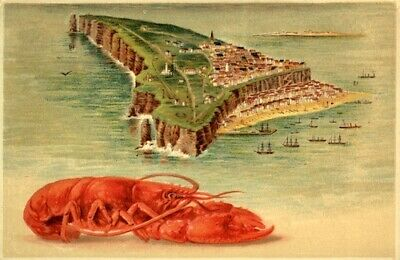 Germany Helgoland 1910 Picture Postcard, Posted At Sea Onboard the Steamship