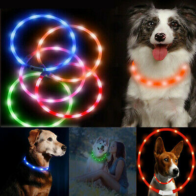 LED Flashing Pet Dog Collar Rechargeable USB Pet Light Up Waterproof Adjustable