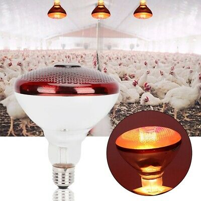 Infrared Red Heat Lamp with Bulb Poultry Brooder chicks Hatching Puppies Piglet