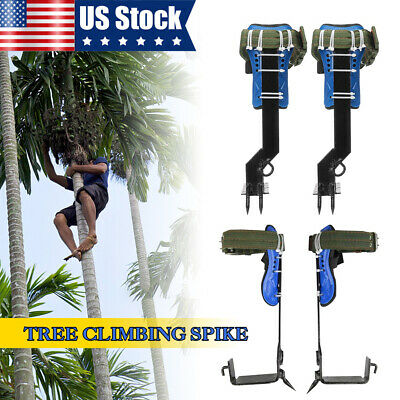 Pole Graff OPEN BOX VN107Y Tree Climbing Spike Set Pole Spur Climber with Tree