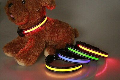 LED Dog Collar USB Rechargeable Pet Nylon Adjustable Flashing Safety Cat Collars