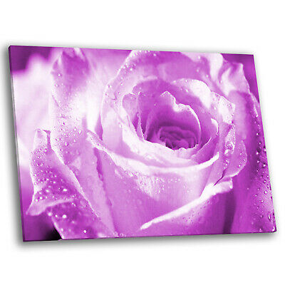 Raindrops on the Lilac Canvas Wall Art