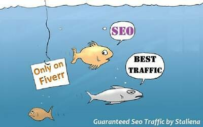 Guarantee Low Bounce Rate True Keyword Targeted Traffic Around 100 Daily Traffic