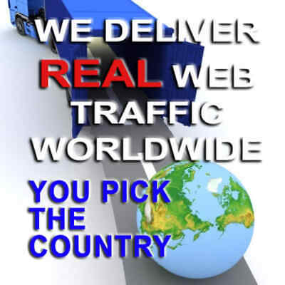 Real Web Traffic from Targeted Countries Web Visitors from Most World Countries