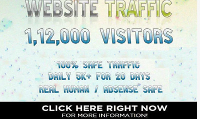 Bring Web Real Website Traffic Visitors Daily 6000+ Traffic for 20 Days