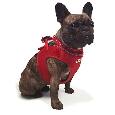 Ancol Step In Dog Harness in Red Breathable Nylon Mesh Fabric in 5 Sizes