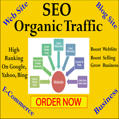 Drive Seo Web Traffic,organic Visitors  Provide Tracking Link, 1 Day Delivery