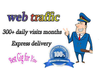 Drive Usa or Worldwide Real Traffic for 30 Days Worldwide Daily Visit