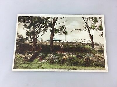 Postcard - Penfolds Distillery Nuriootpa South Australia - Colour - Vintage