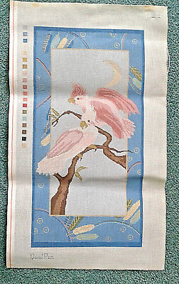 needlepoint canvas   Julias'   Gorgeous Parrots