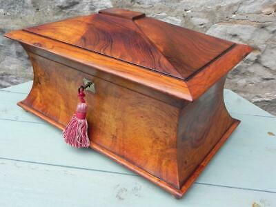 Antique Rosewood Tea Caddy. William IV 1830's Waisted Sarco'. Lock & Key (214)