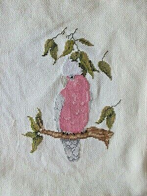 Craft Hand Made Cross Stitch Picture Completed And Framed Cockatoo Bird
