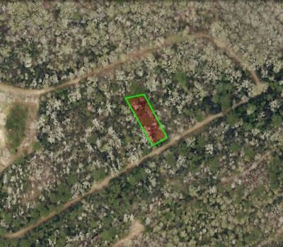 1/3 COUNTRY LOT - CONROE TX * RV OK * RIVER ACCESS *- High-Bid Wins No Reserve